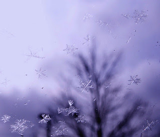 It's Snowing!  (AGAIN)