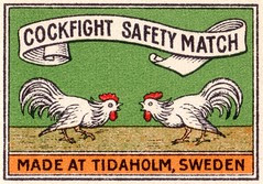 safetymatch015