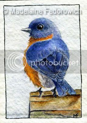 Little Blue Bird ACEO
