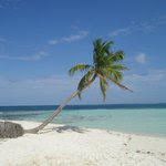 From Silk Cay -- the ten-palm island