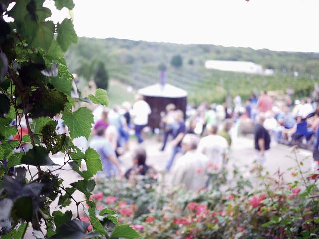 Vinkolet Arts & Wine Festival