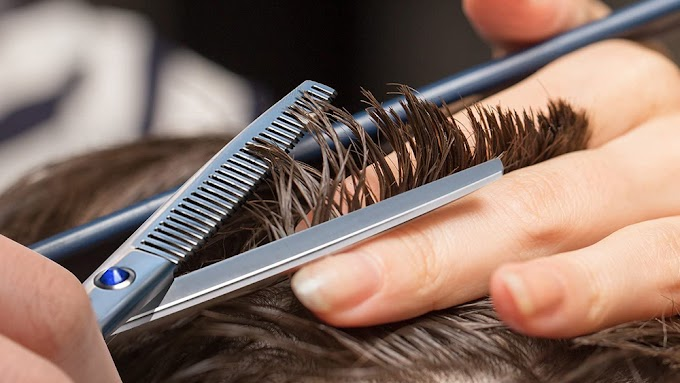 What to Look For When Buying Thinning Shears Online