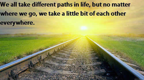 We All Take Different Paths In Life But Inspirational Quotes