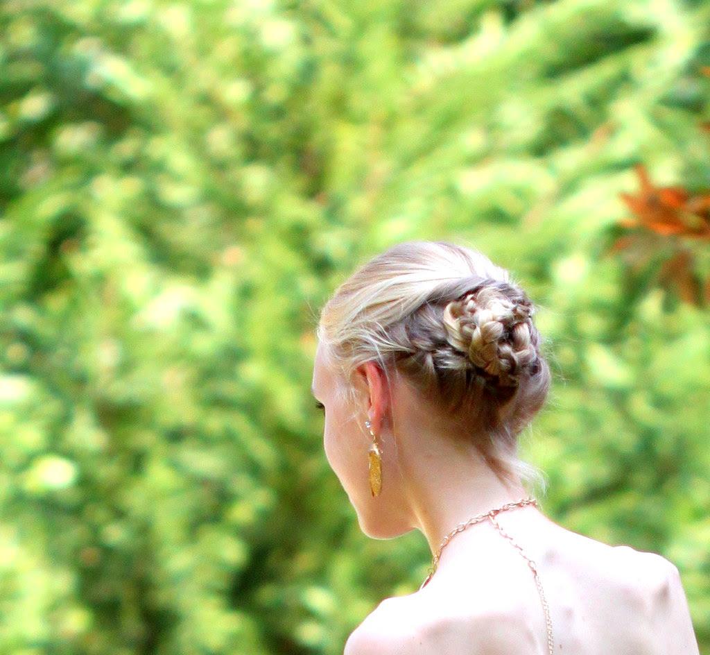 Swan Princess8