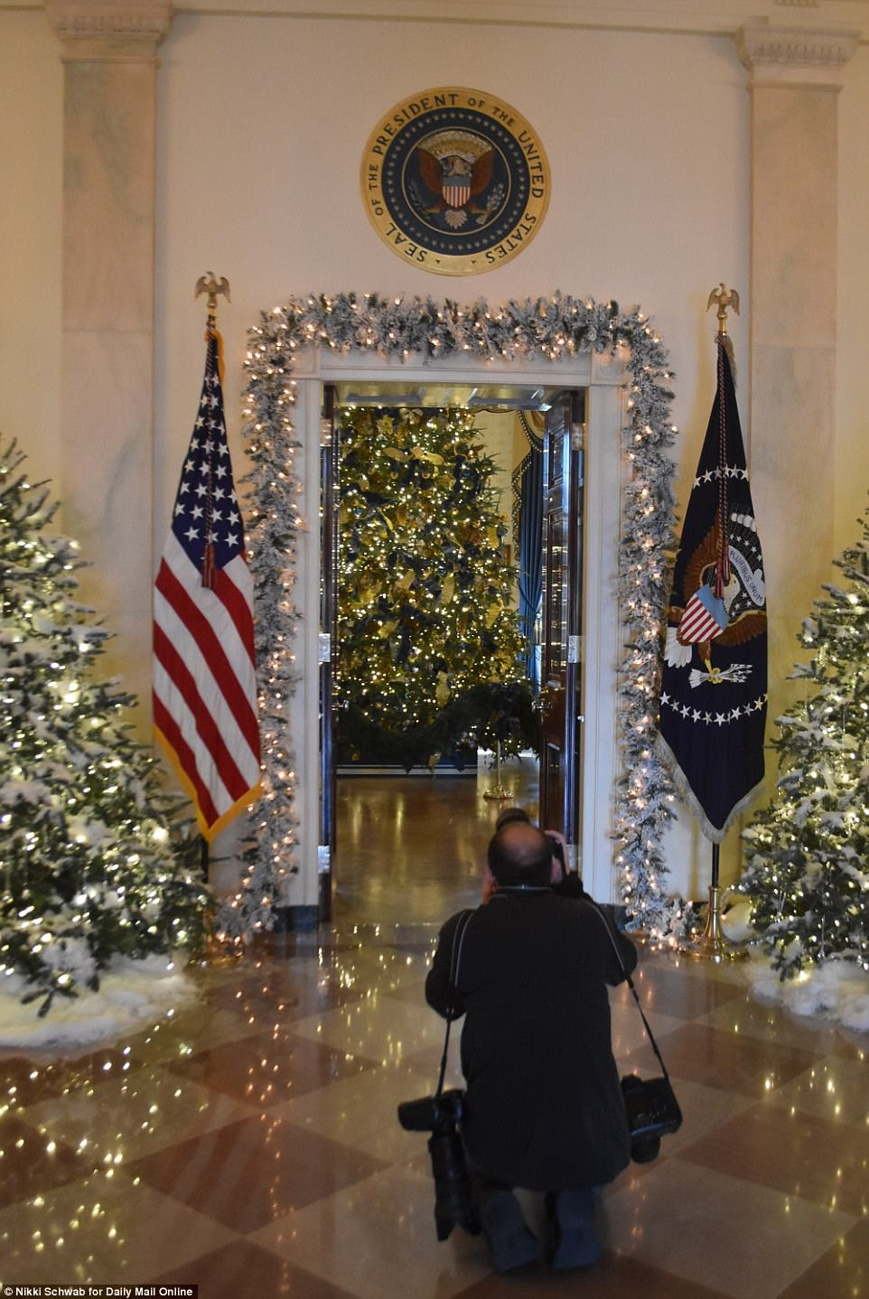 A photographer kneels and grabs a shot of theEndeavor, Wisconsin-grown tree that was installed in the White House Blue Room