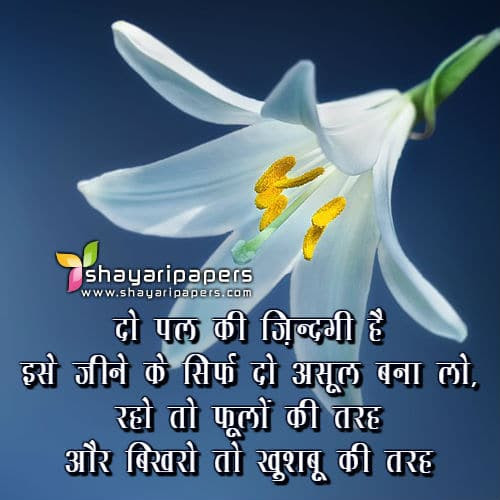 315 Good Morning Shayari Images गड मरनग