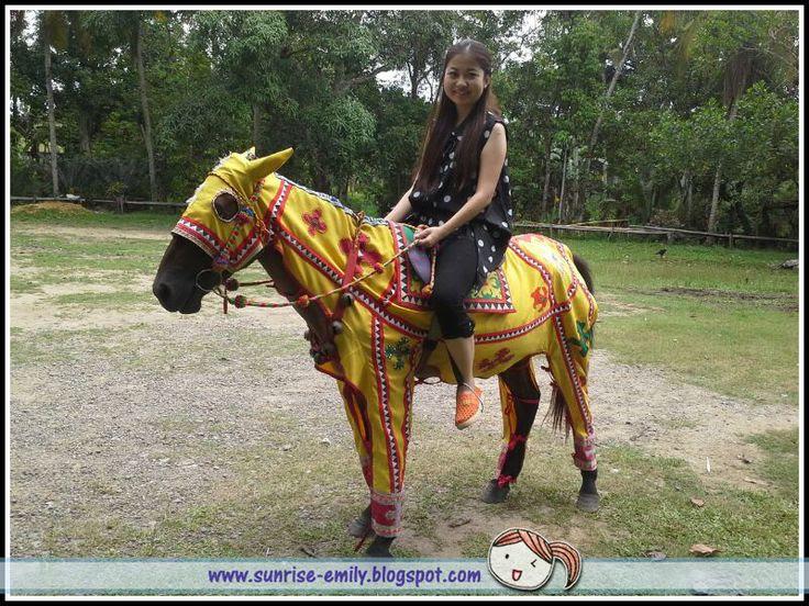 Bajau Horse Riding