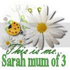 This is me Sarah mum of 3