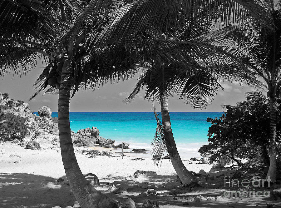 Best Wallpaper Photography Black And White Black And White Beach