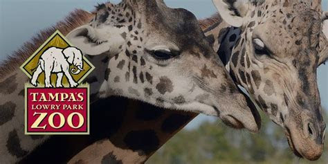 Lowry Park Zoo Field Trip (Free w/MOSI pass) at Tampa's