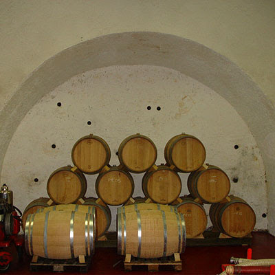 Valsangiacomo: new oak, and holes in the cellar wall