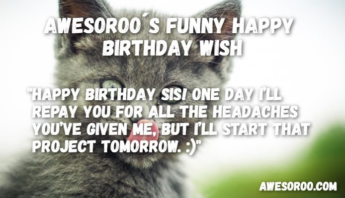 269 Most Funny Hilarious Birthday Wishes Quotes Jan 2019