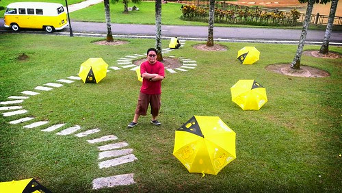 surrounded by yellow umbrellas