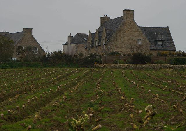 Brittany to Paris-16.jpg