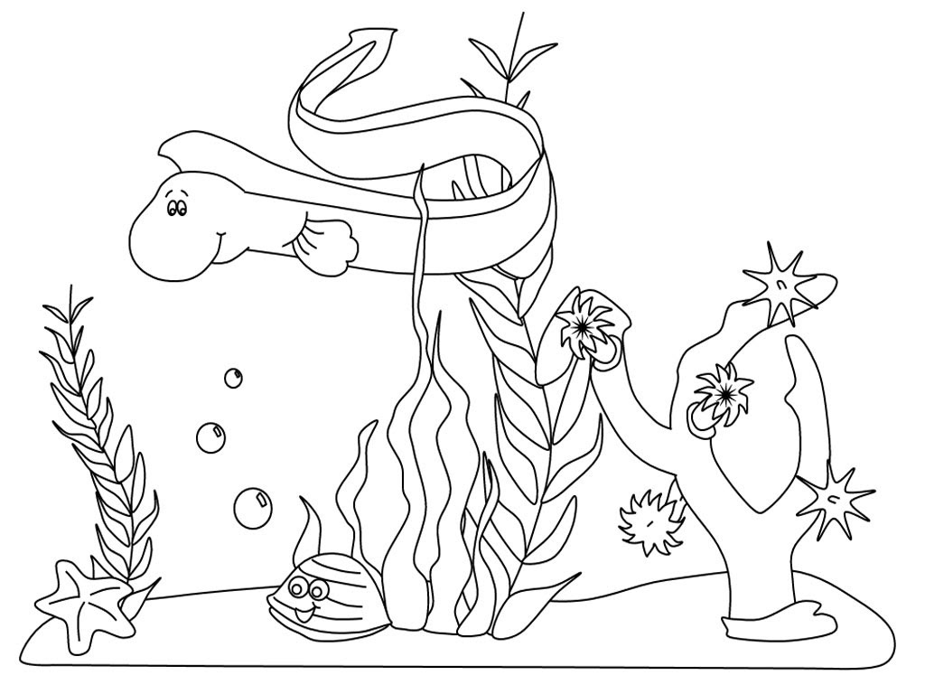 Marine Ecosystem Drawing At Getdrawingscom Free For Personal Use