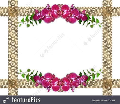 Illustration Of Pink Orchids And Ivy Border