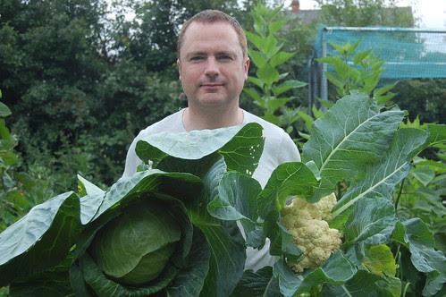 cabbage cauliflower Aug 10