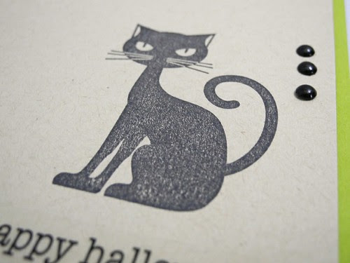 Starry Cat (detail)