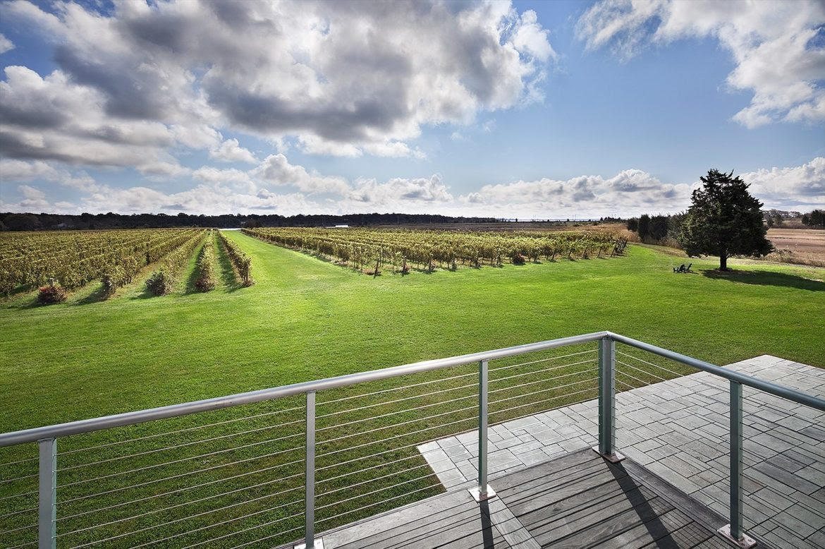 Image result for saltwater farm vineyards east coast wineries devito