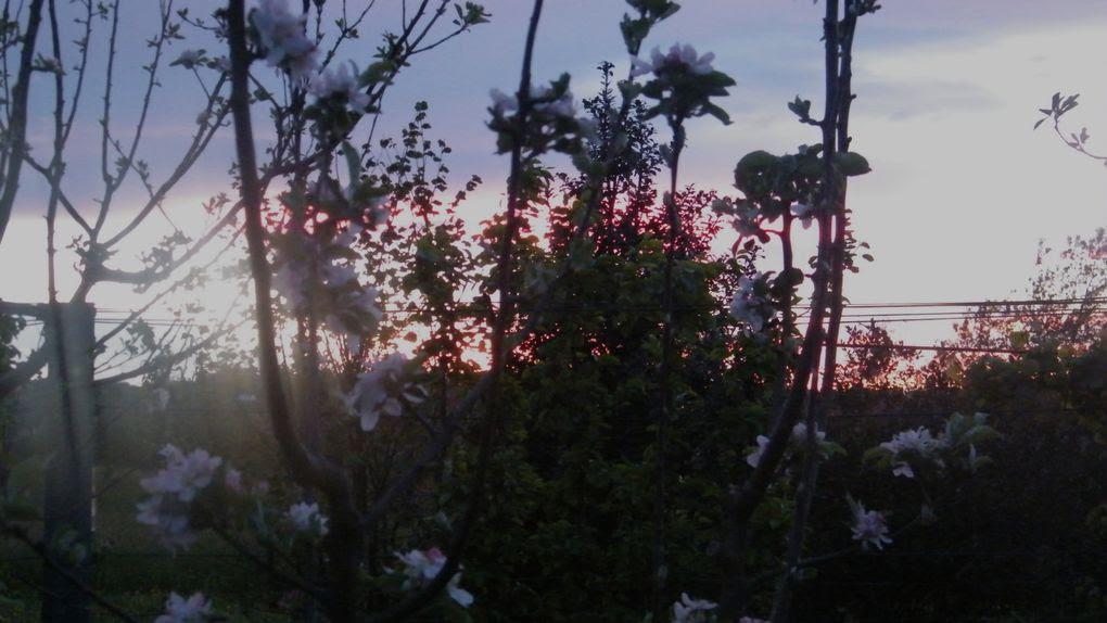Argazki-2014