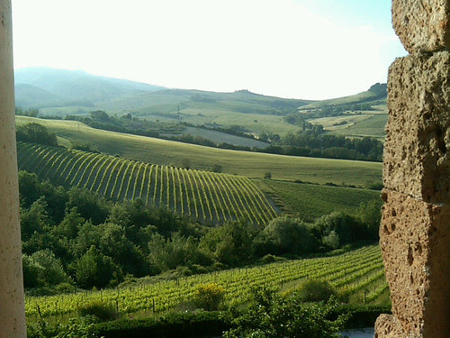 Orvieto: view from the winery