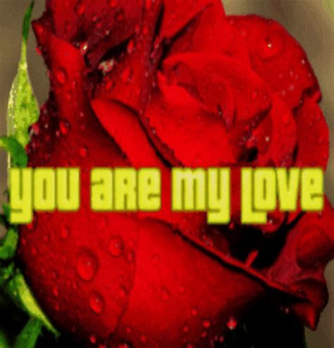 Rose For You, My Love! Free Madly in Love eCards, Greeting