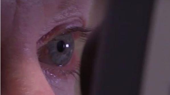Ricerca italiana: impiantata la prima retina artificiale organica, test sugli animali