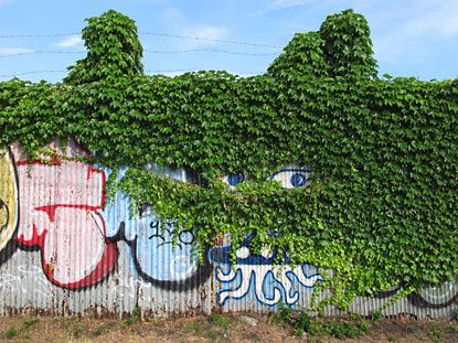 GraffitiFenceEyeBlog