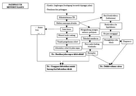 pathway tb menurut kasus
