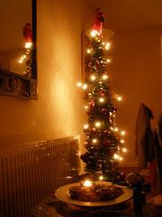 Christmas tree in Stepaside