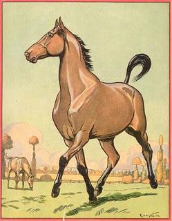 buff cheval