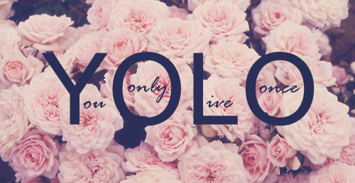 You Only Live Once Unknown Picture Quotes Quoteswave
