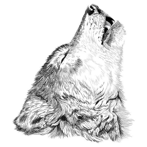 depositphotos_61944711 stock illustration wolf howls sketch
