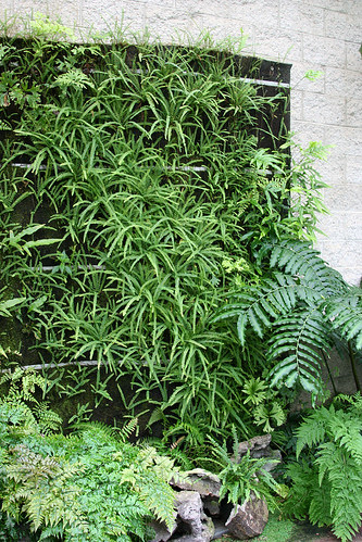 huntington vertical planting