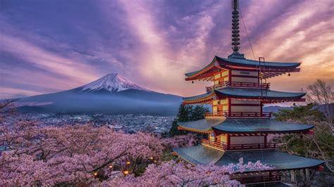springtime  japan hd wallpaper background image