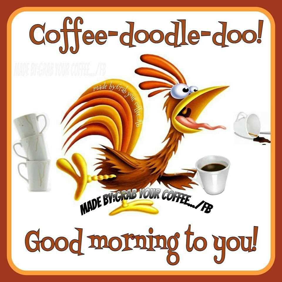 Coffee Doodle Doo! Good Morning To You! Pictures, Photos ...