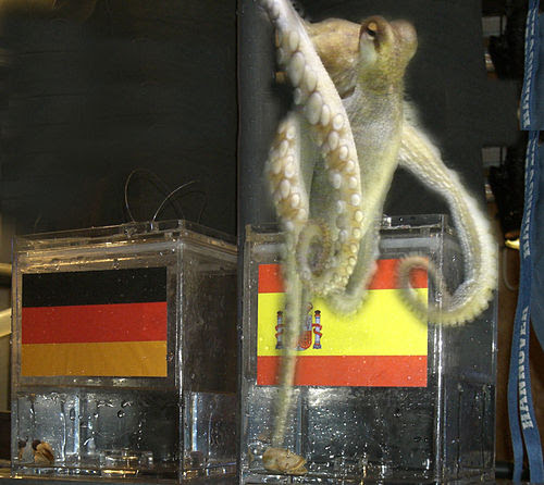 Paul the Octopus 1