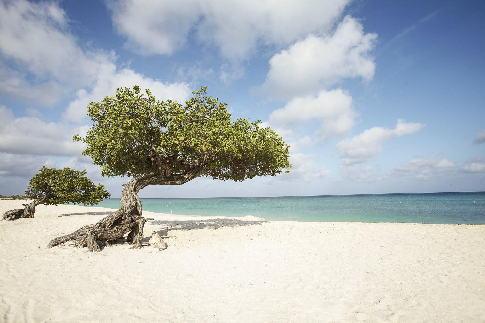 Manchebo Beach Resort Photo Gallery