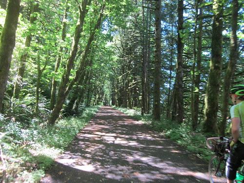Eagle Creek trail out of Cascade Locks