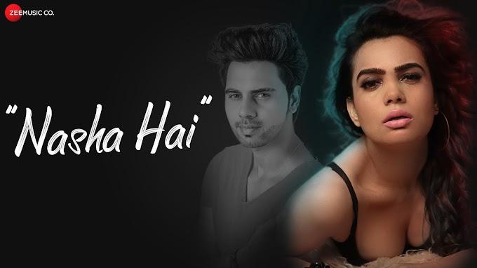 Nasha Hai New Hindi song Lyrics- Danish Alfaaz