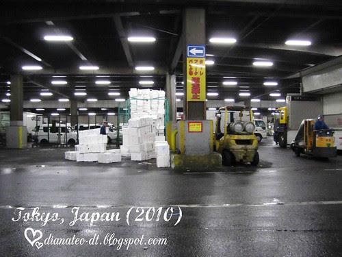 tsukiji 05