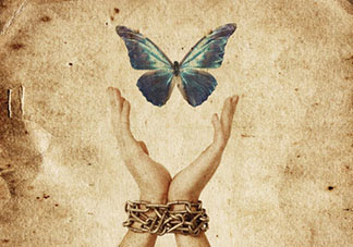 freedom-butterfly