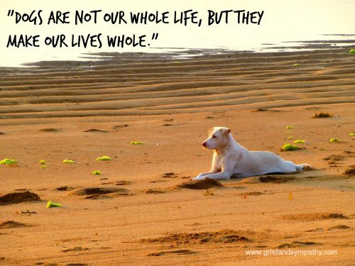 Quotes About Losing A Dog. QuotesGram