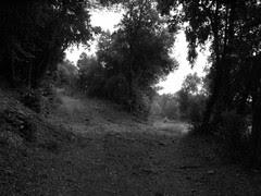 En blanc i negre: moments de decisions