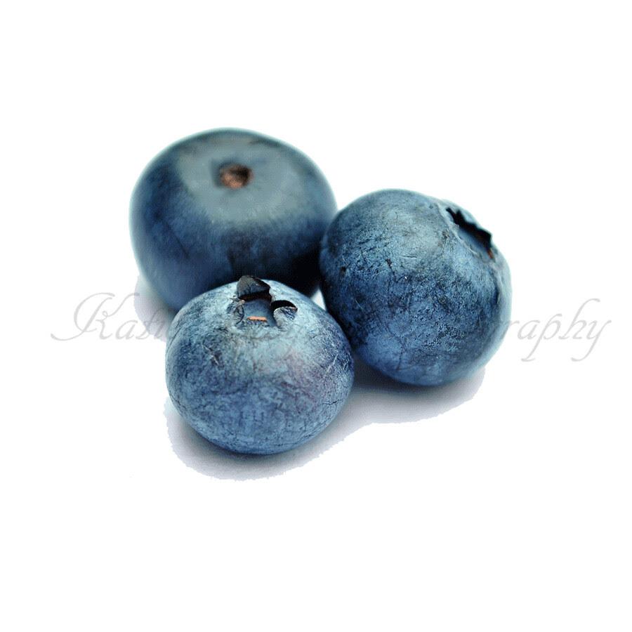 Blueberry-Trio---square
