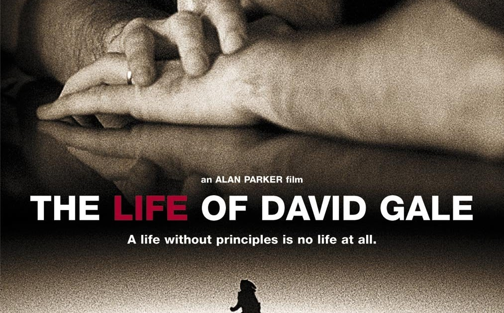 film analysis the life of david
