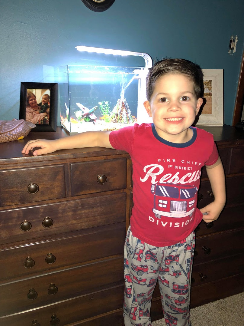 Tori and Cory have bought the four-year-old some new fish. Credit: Kennedy News and Media