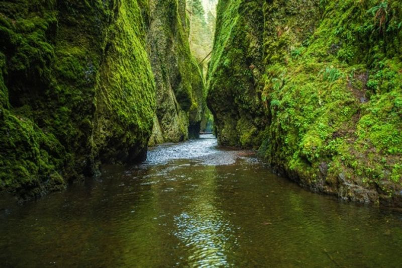 Veja uma lista com parques nacionais para visitar nos EUA, clicando na foto!