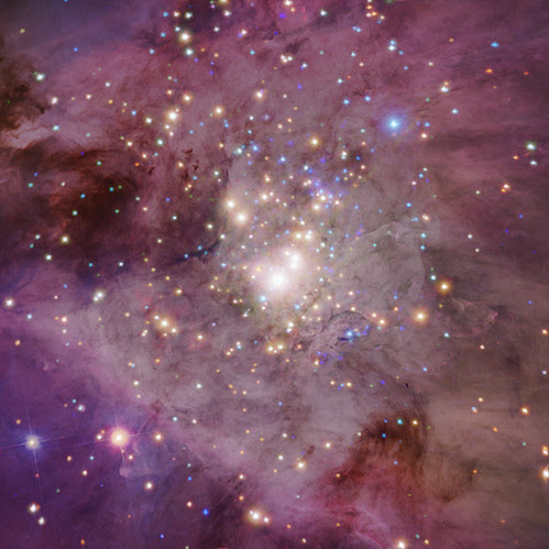 Orion Nebula: Peering into the Orion Nebula
