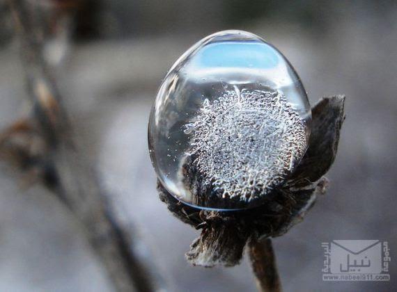 04-freezing_rain